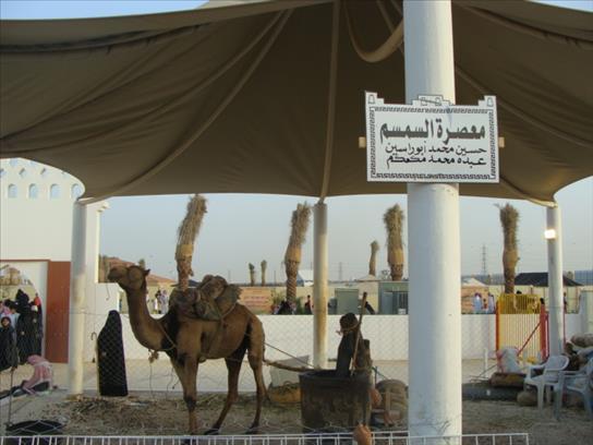 janadriya-festival-riyadh-saudi-arabia-20