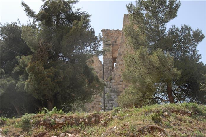 jordan-sightseeing-ajloun-3