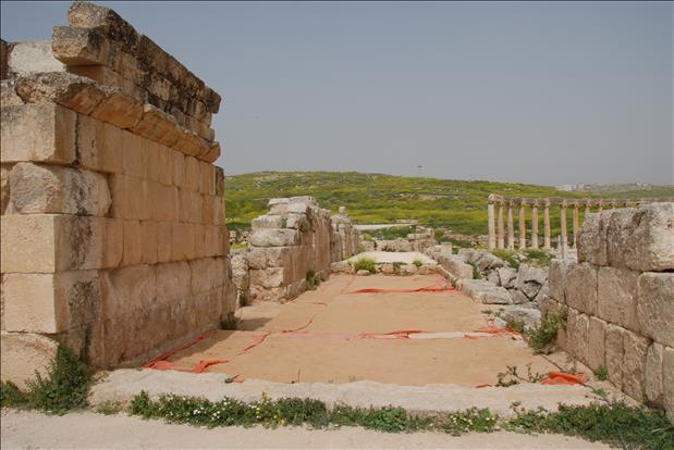 jordan-sightseeing-jerash-05