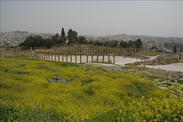 jordan-sightseeing-jerash-11