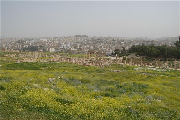 jordan-sightseeing-jerash-15