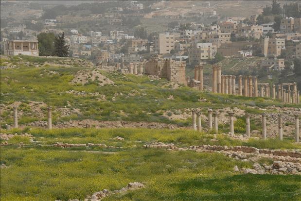 jordan-sightseeing-jerash-18