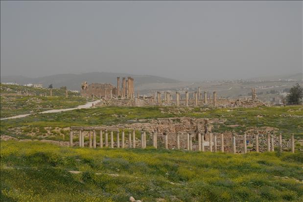jordan-sightseeing-jerash-20