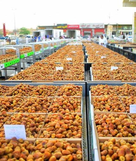 saudi-dates-market-season-2