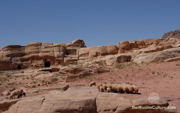 jordan-petra-pictures147