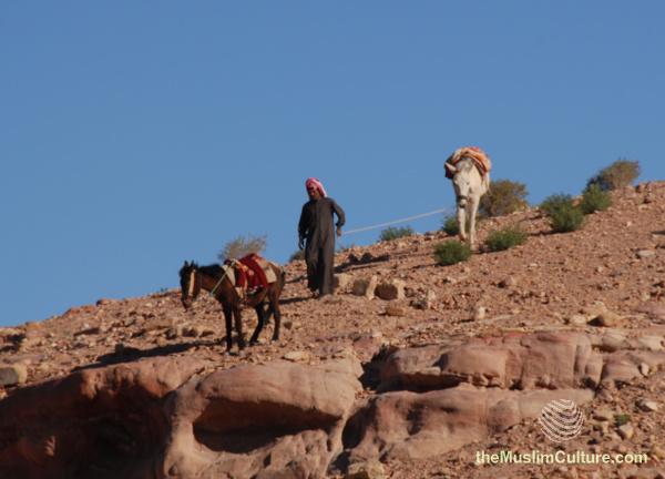 jordan-petra-pictures17