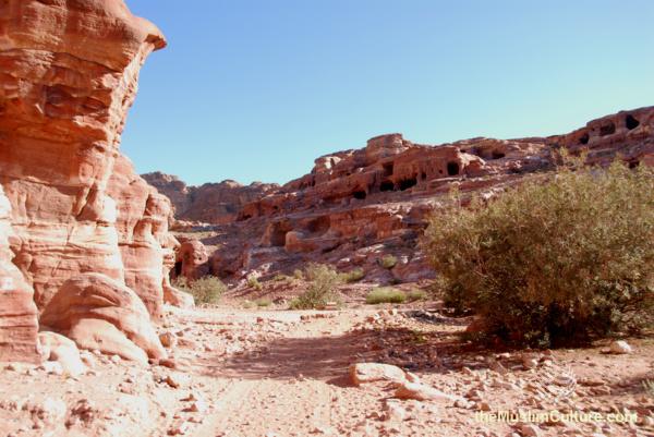 jordan-petra-pictures31