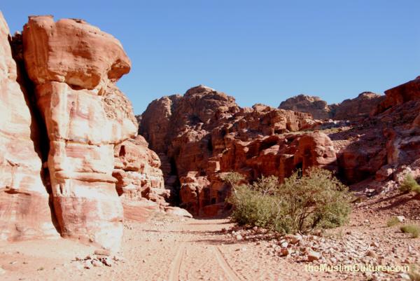 jordan-petra-pictures32