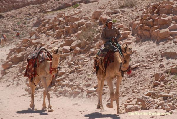 jordan-petra-pictures77