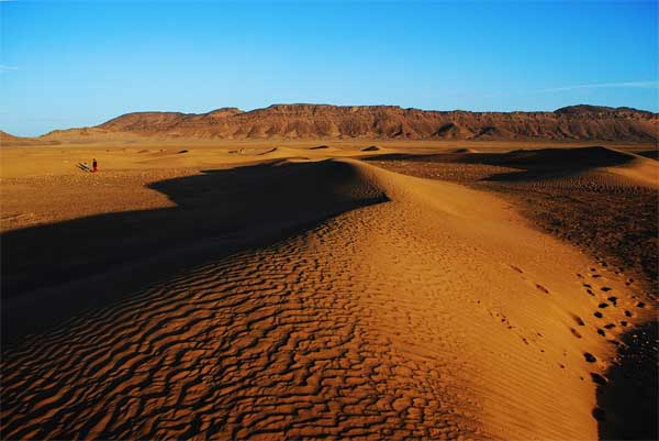Desert landscape of the Sahara, Morocco Sightseeing